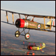 Oshkosh to host aviation celebration