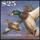 Federal Duck Stamp now on sale