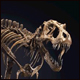 Christie's to auction STAN, a T. rex skeleton