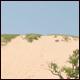 National Park Week: Only bears sleep at Sleeping Bear Dunes