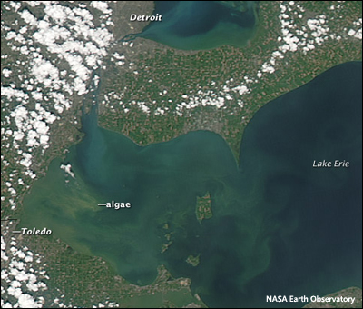 Algal blooms and August soon to arrive